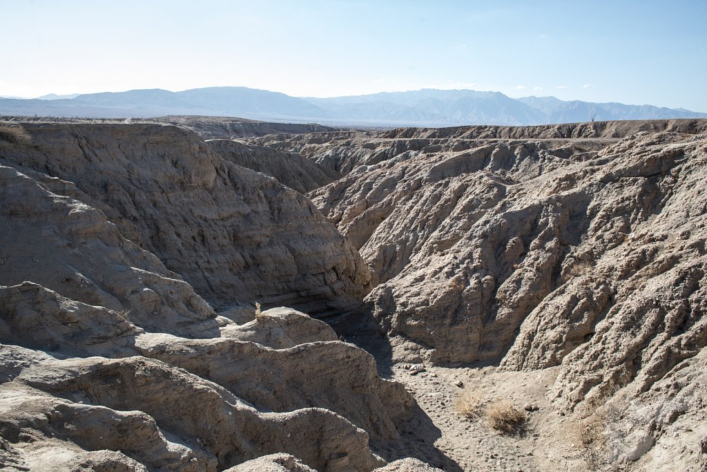 A Day in Anza Borrego V